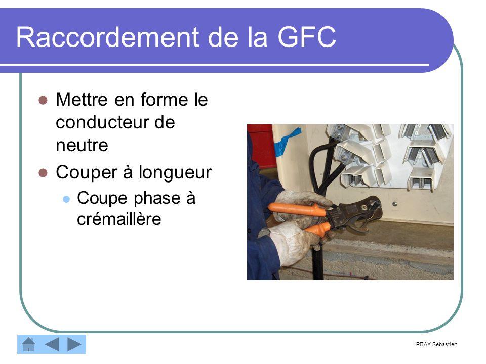 Raccordement de la GFC Mettre en forme le conducteur de neutre