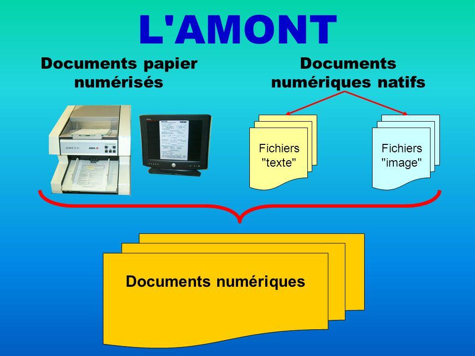 L AMONT Documents papier numérisés Documents numériques natifs