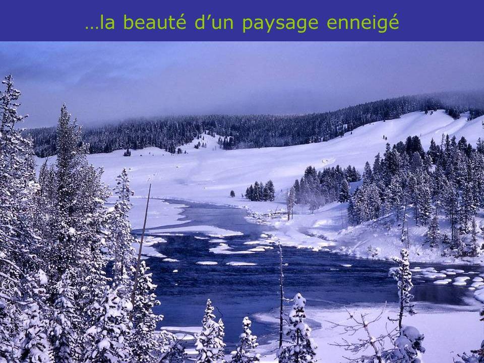 …la beauté d'un paysage enneigé