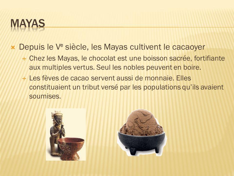 Mayas Depuis le Ve siècle, les Mayas cultivent le cacaoyer
