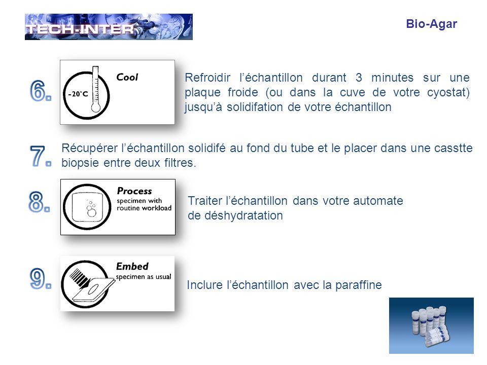 Bio-Agar Refroidir l'échantillon durant 3 minutes sur une plaque froide (ou dans la cuve de votre cyostat) jusqu'à solidifation de votre échantillon.