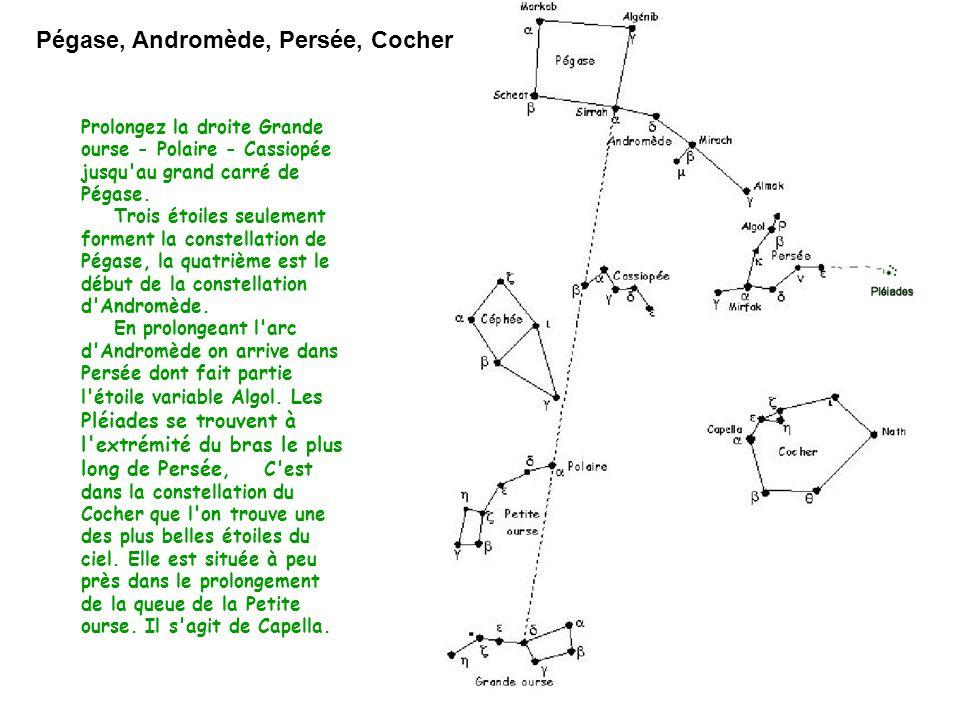 Pégase, Andromède, Persée, Cocher