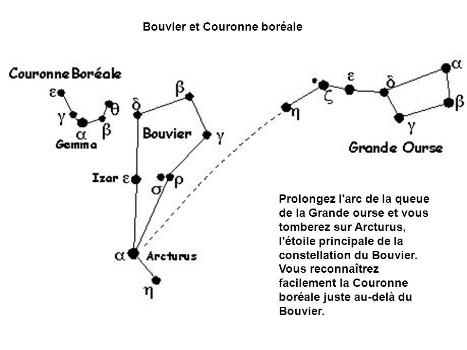 Bouvier et Couronne boréale
