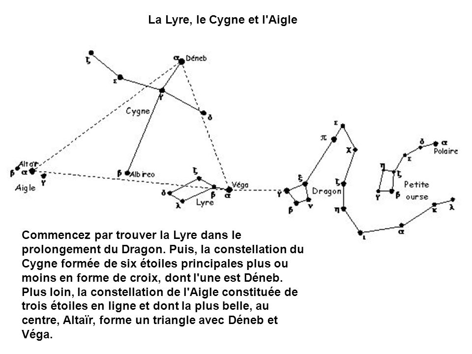 La Lyre, le Cygne et l Aigle