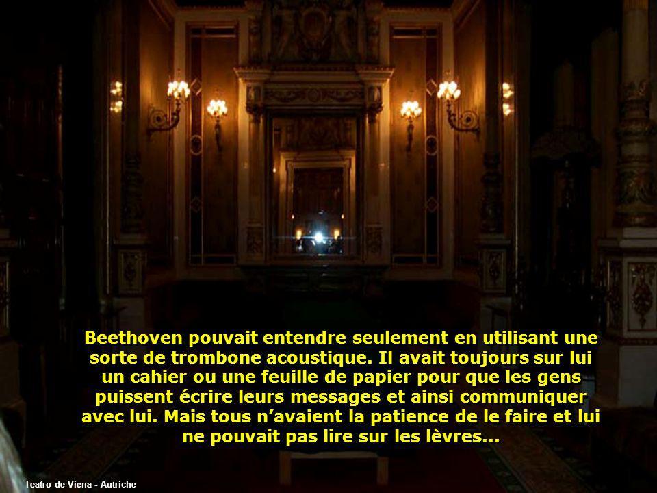 Beethoven pouvait entendre seulement en utilisant une sorte de trombone acoustique. Il avait toujours sur lui un cahier ou une feuille de papier pour que les gens puissent écrire leurs messages et ainsi communiquer avec lui. Mais tous n'avaient la patience de le faire et lui ne pouvait pas lire sur les lèvres...