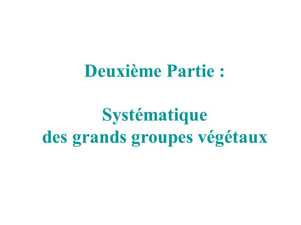 des grands groupes végétaux