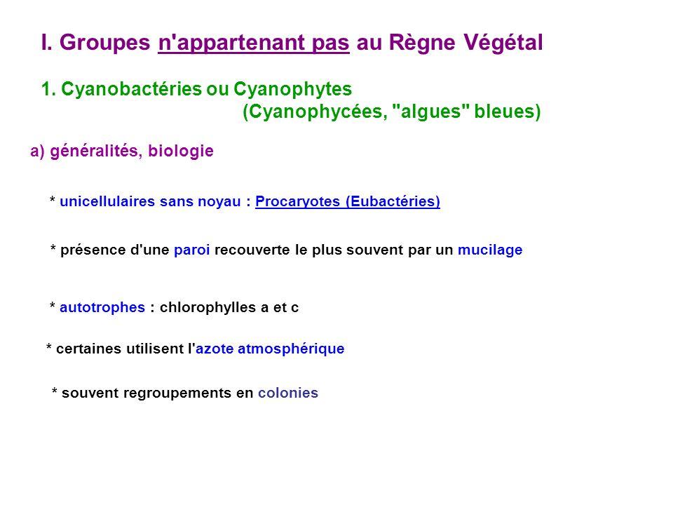 I. Groupes n appartenant pas au Règne Végétal