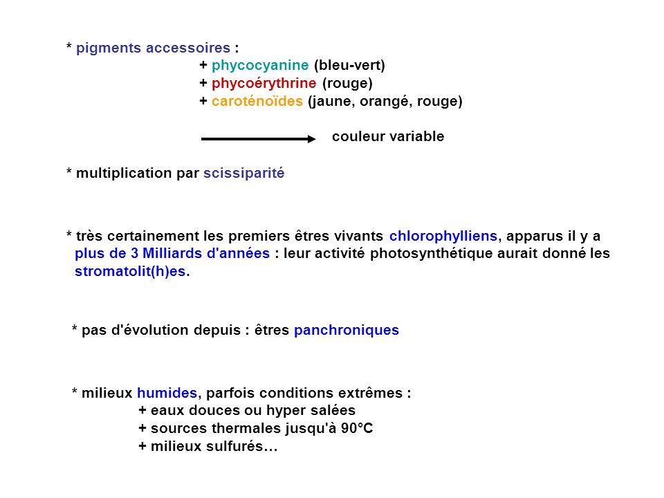 * pigments accessoires :