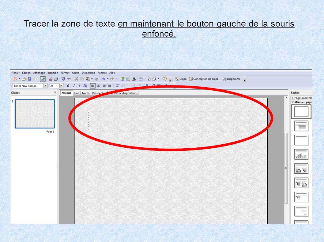 Tracer la zone de texte en maintenant le bouton gauche de la souris enfoncé.
