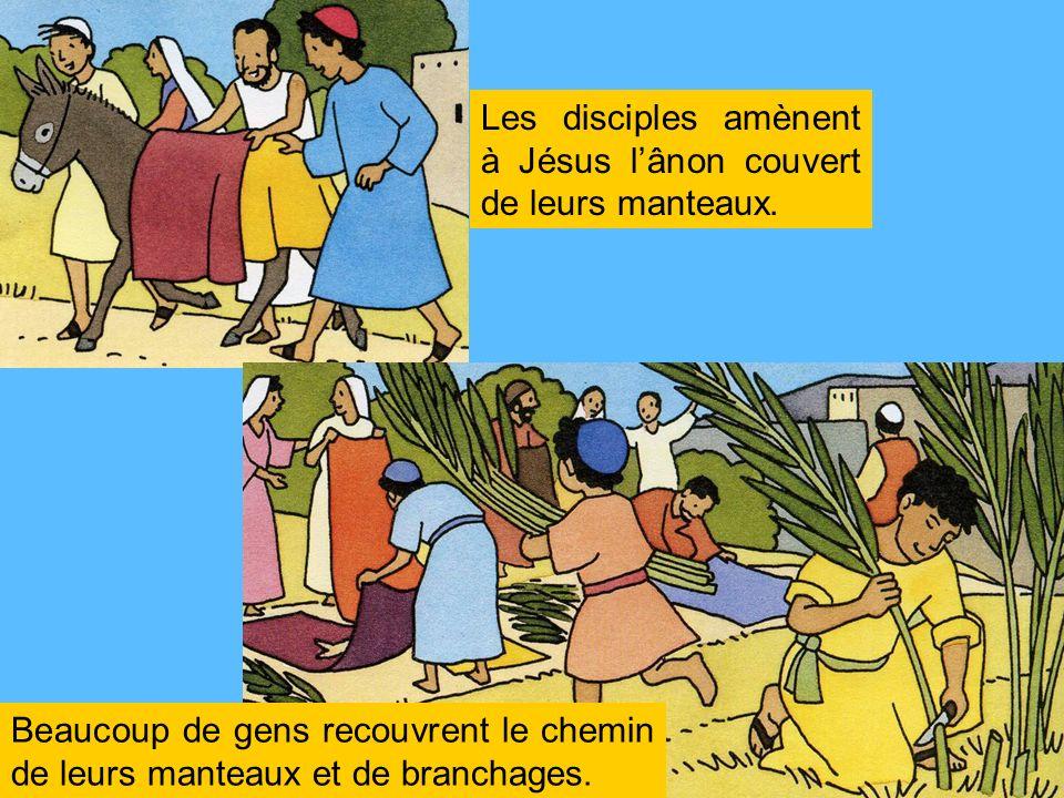 Les disciples amènent à Jésus l'ânon couvert de leurs manteaux.