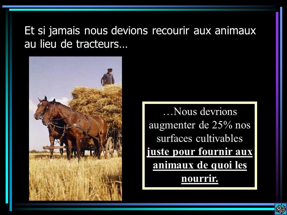 Et si jamais nous devions recourir aux animaux au lieu de tracteurs…