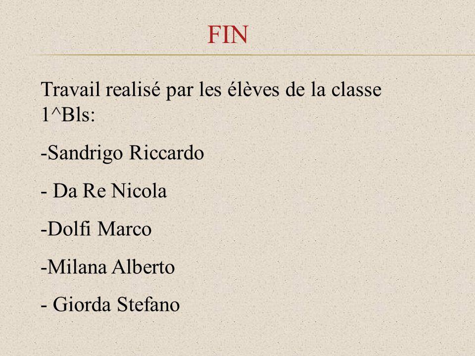 FIN Travail realisé par les élèves de la classe 1^Bls: