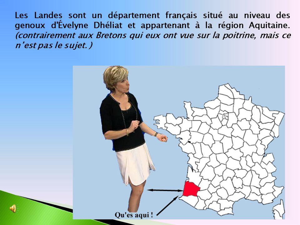Les Landes sont un département français situé au niveau des genoux d Évelyne Dhéliat et appartenant à la région Aquitaine.