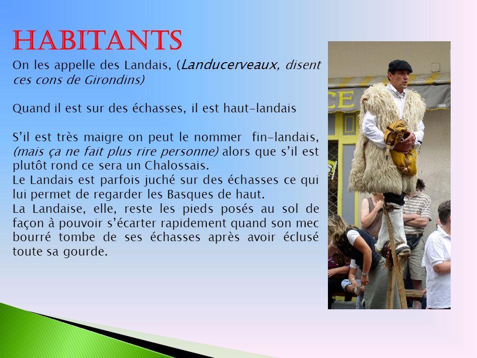 Habitants On les appelle des Landais, (Landucerveaux, disent ces cons de Girondins) Quand il est sur des échasses, il est haut-landais.