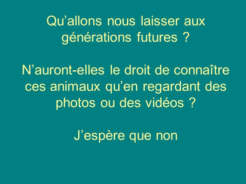 Qu'allons nous laisser aux générations futures