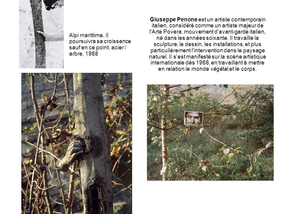 Giuseppe Penone est un artiste contemporain italien, considéré comme un artiste majeur de l Arte Povera, mouvement d avant-garde italien, né dans les années soixante. Il travaille la sculpture, le dessin, les installations, et plus particulièrement l intervention dans le paysage naturel. Il s est manifesté sur la scène artistique internationale dès 1968, en travaillant à mettre en relation le monde végétal et le corps.
