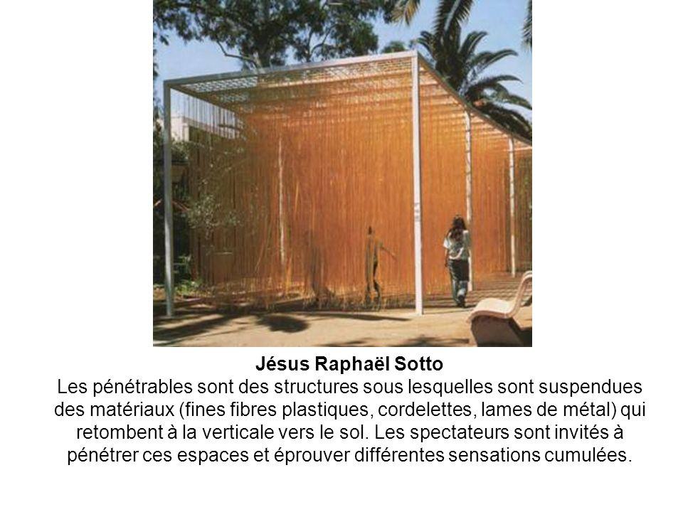 Jésus Raphaël Sotto Les pénétrables sont des structures sous lesquelles sont suspendues des matériaux (fines fibres plastiques, cordelettes, lames de métal) qui retombent à la verticale vers le sol.