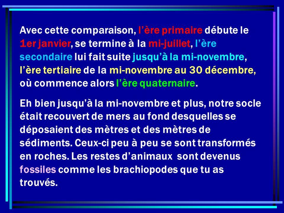 Avec cette comparaison, l'ère primaire débute le 1er janvier, se termine à la mi-juillet, l'ère secondaire lui fait suite jusqu'à la mi-novembre, l'ère tertiaire de la mi-novembre au 30 décembre, où commence alors l'ère quaternaire.