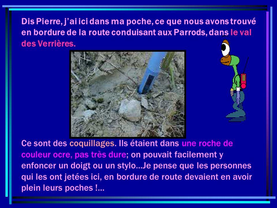 Dis Pierre, j'ai ici dans ma poche, ce que nous avons trouvé en bordure de la route conduisant aux Parrods, dans le val des Verrières.