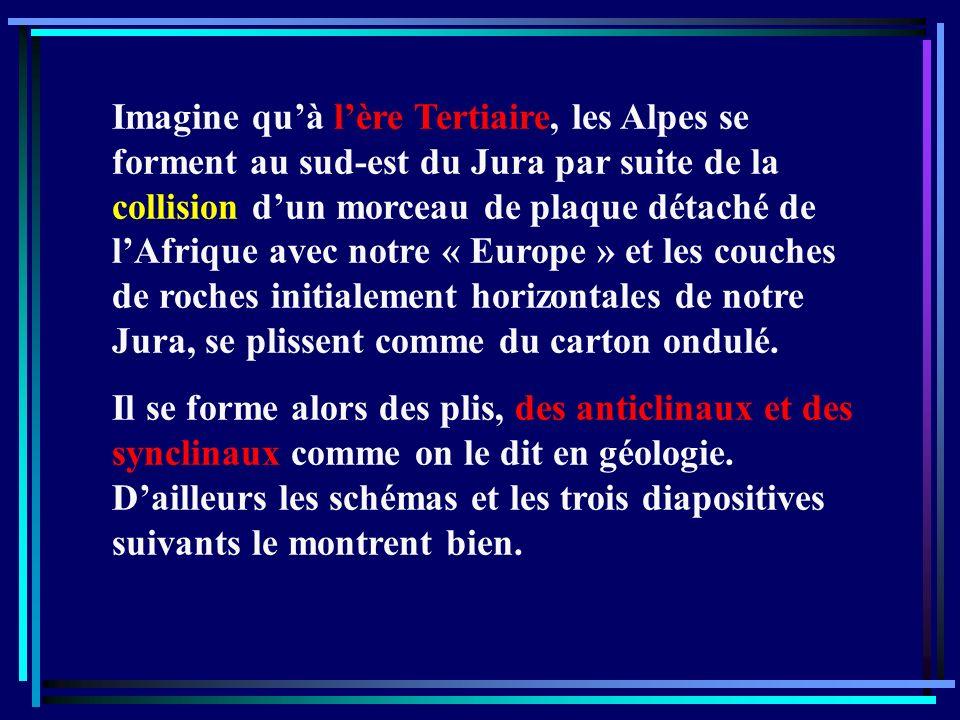 Imagine qu'à l'ère Tertiaire, les Alpes se forment au sud-est du Jura par suite de la collision d'un morceau de plaque détaché de l'Afrique avec notre « Europe » et les couches de roches initialement horizontales de notre Jura, se plissent comme du carton ondulé.