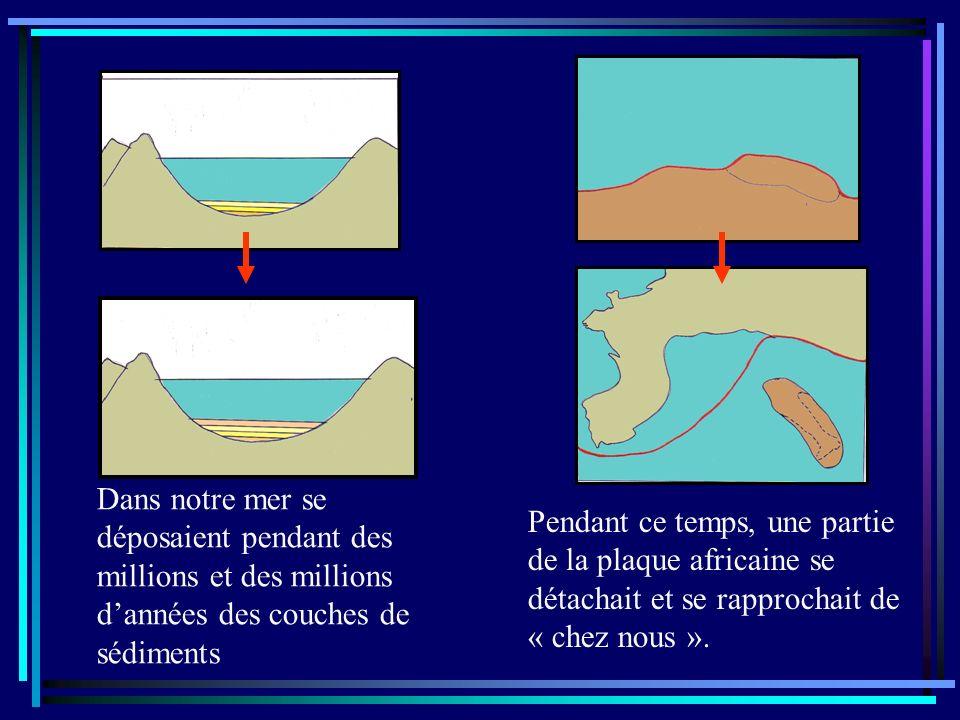 Dans notre mer se déposaient pendant des millions et des millions d'années des couches de sédiments