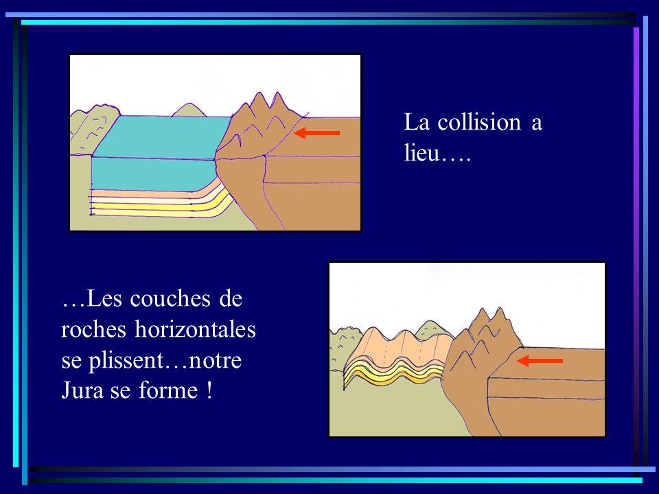 La collision a lieu…. …Les couches de roches horizontales se plissent…notre Jura se forme !