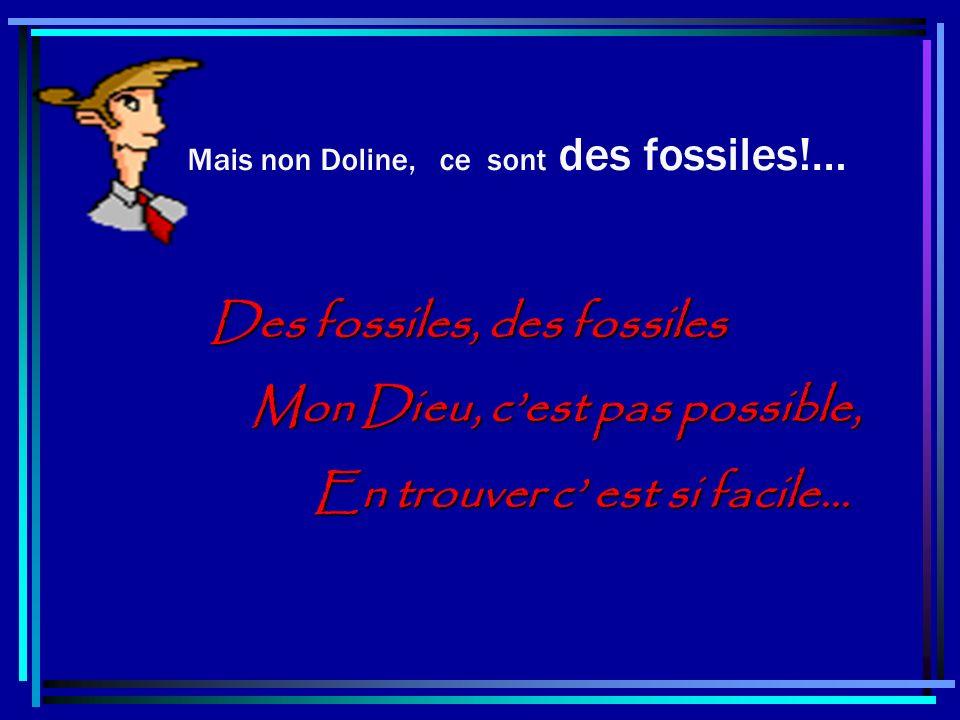Des fossiles, des fossiles Mon Dieu, c'est pas possible,