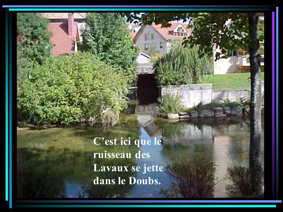 C'est ici que le ruisseau des Lavaux se jette dans le Doubs.