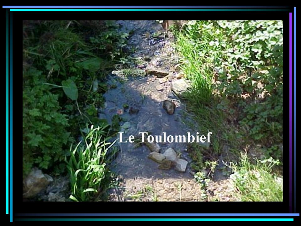 Le Toulombief