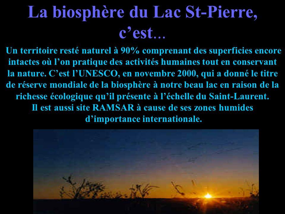 La biosphère du Lac St-Pierre, c'est...