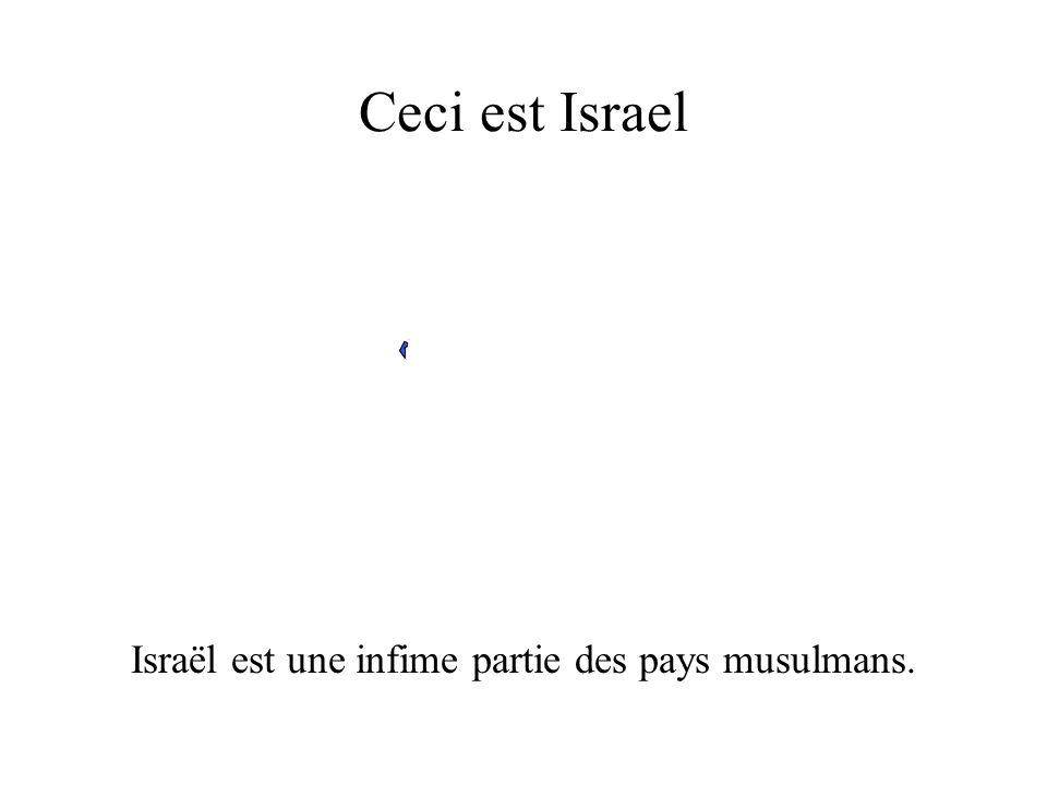 Israël est une infime partie des pays musulmans.