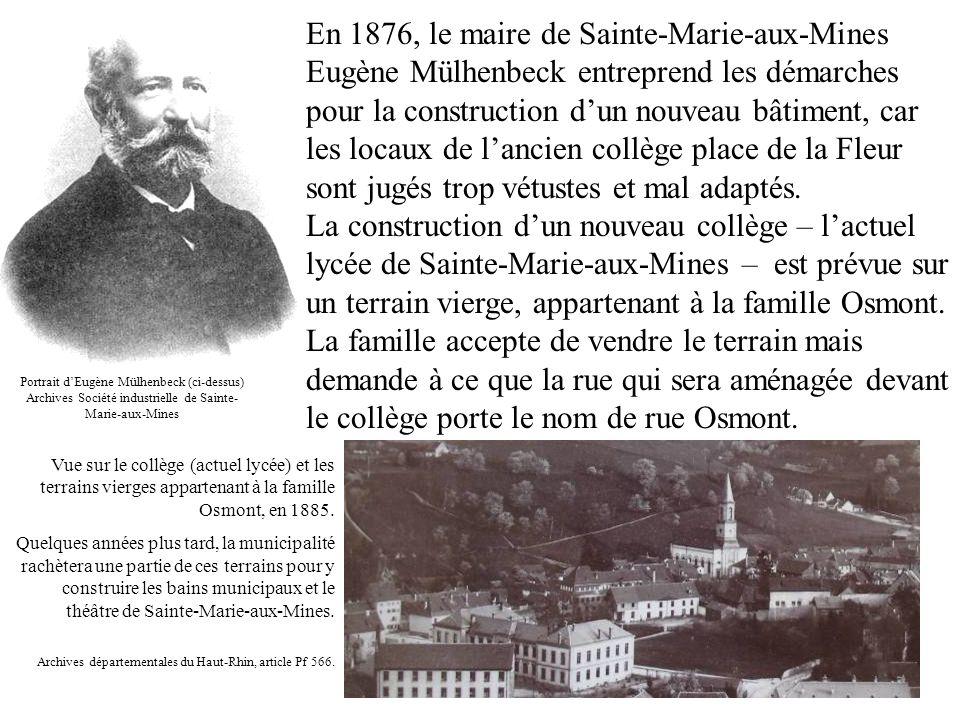 En 1876, le maire de Sainte-Marie-aux-Mines Eugène Mülhenbeck entreprend les démarches pour la construction d'un nouveau bâtiment, car les locaux de l'ancien collège place de la Fleur sont jugés trop vétustes et mal adaptés.