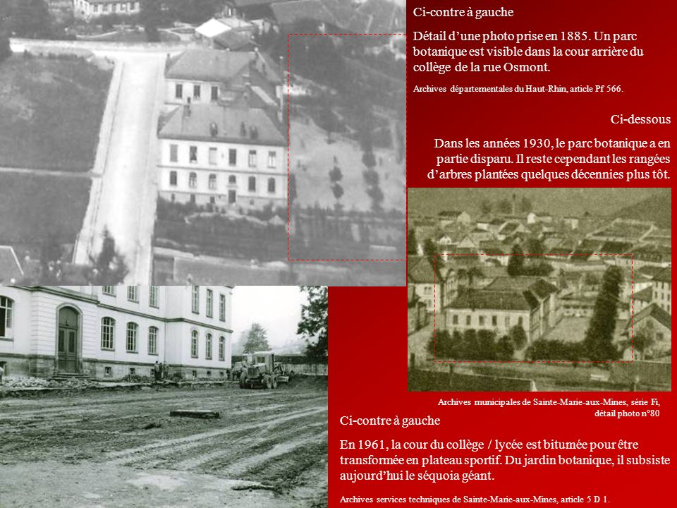Ci-contre à gauche Détail d'une photo prise en 1885. Un parc botanique est visible dans la cour arrière du collège de la rue Osmont.