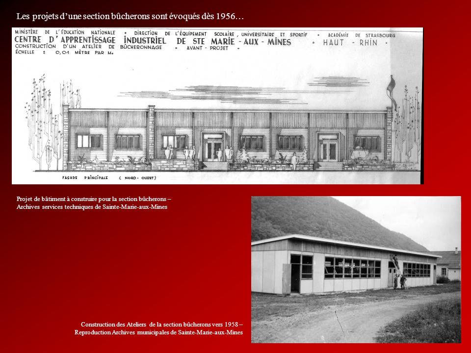 Les projets d'une section bûcherons sont évoqués dès 1956…