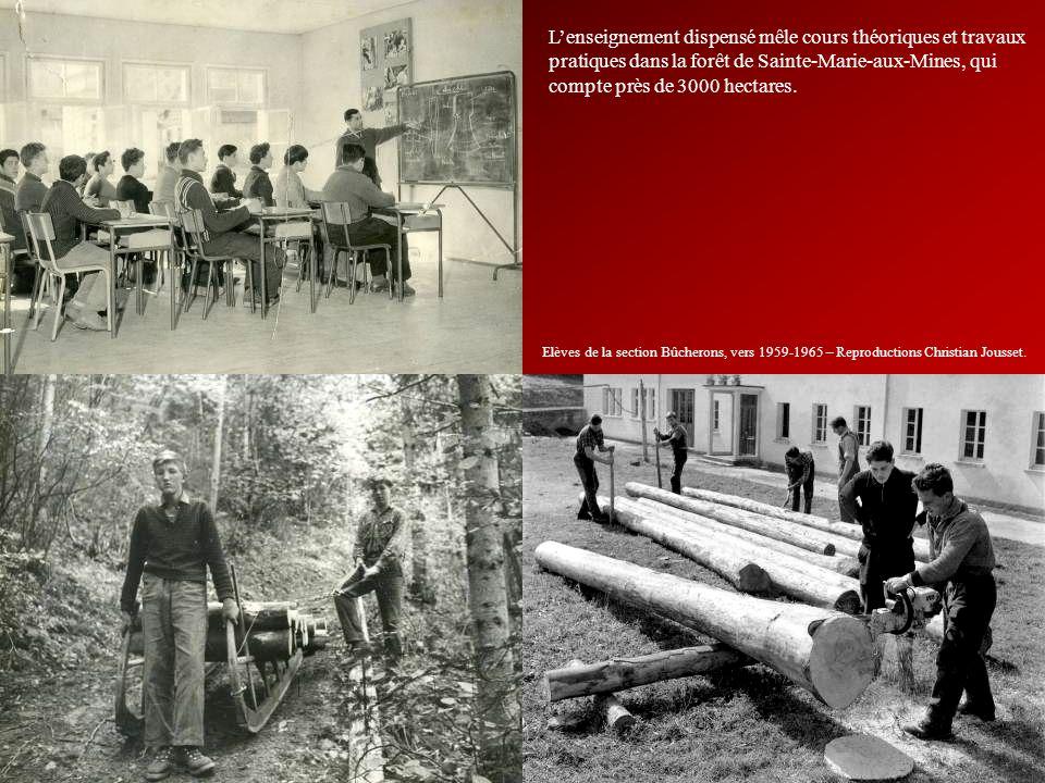 L'enseignement dispensé mêle cours théoriques et travaux pratiques dans la forêt de Sainte-Marie-aux-Mines, qui compte près de 3000 hectares.