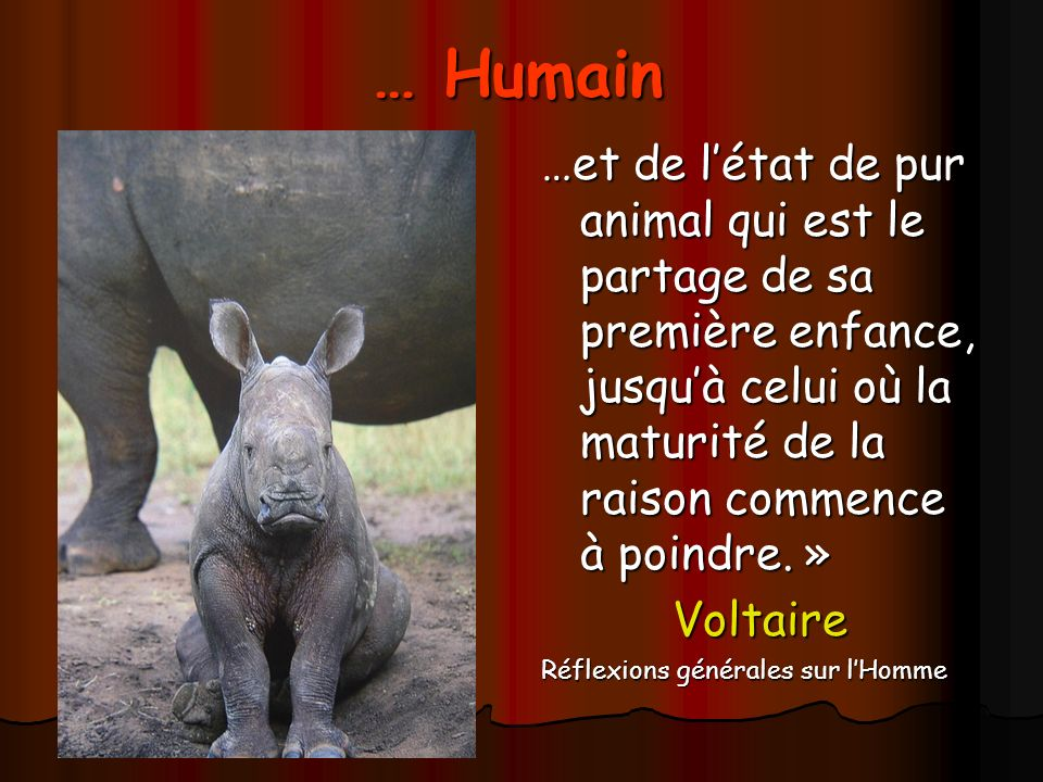 … Humain …et de l'état de pur animal qui est le partage de sa première enfance, jusqu'à celui où la maturité de la raison commence à poindre. »
