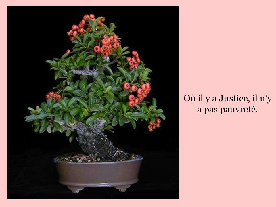 Où il y a Justice, il n'y a pas pauvreté.
