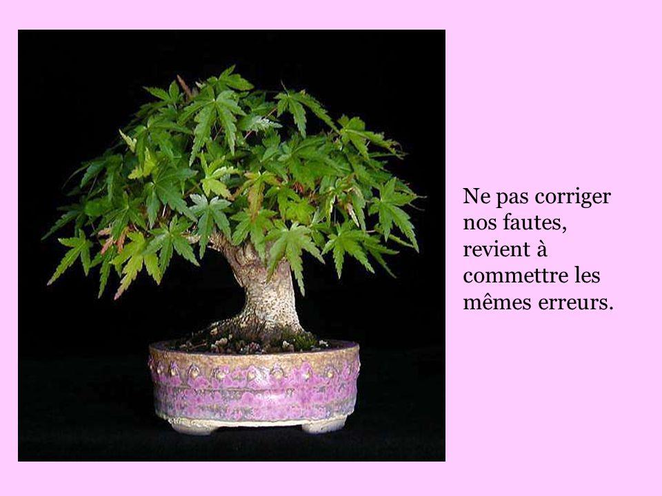 Ne pas corriger nos fautes, revient à commettre les mêmes erreurs.