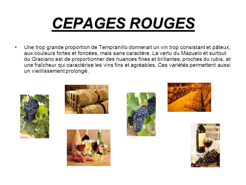 CEPAGES ROUGES
