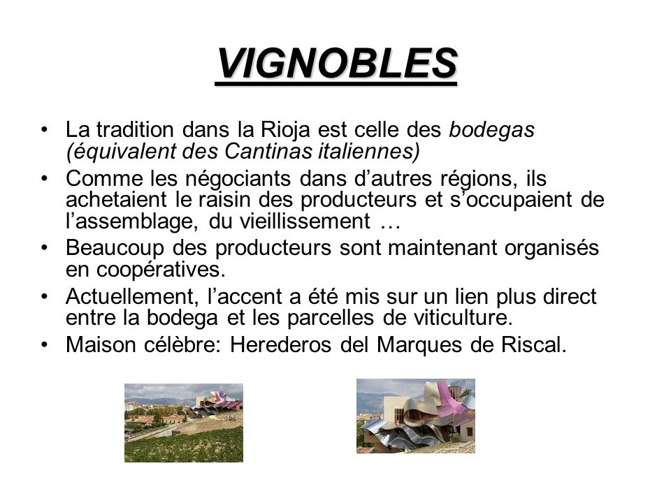 VIGNOBLES La tradition dans la Rioja est celle des bodegas (équivalent des Cantinas italiennes)