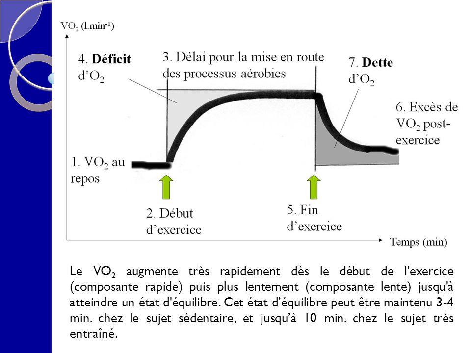 Le VO2 augmente très rapidement dès le début de l exercice (composante rapide) puis plus lentement (composante lente) jusqu à atteindre un état d équilibre.