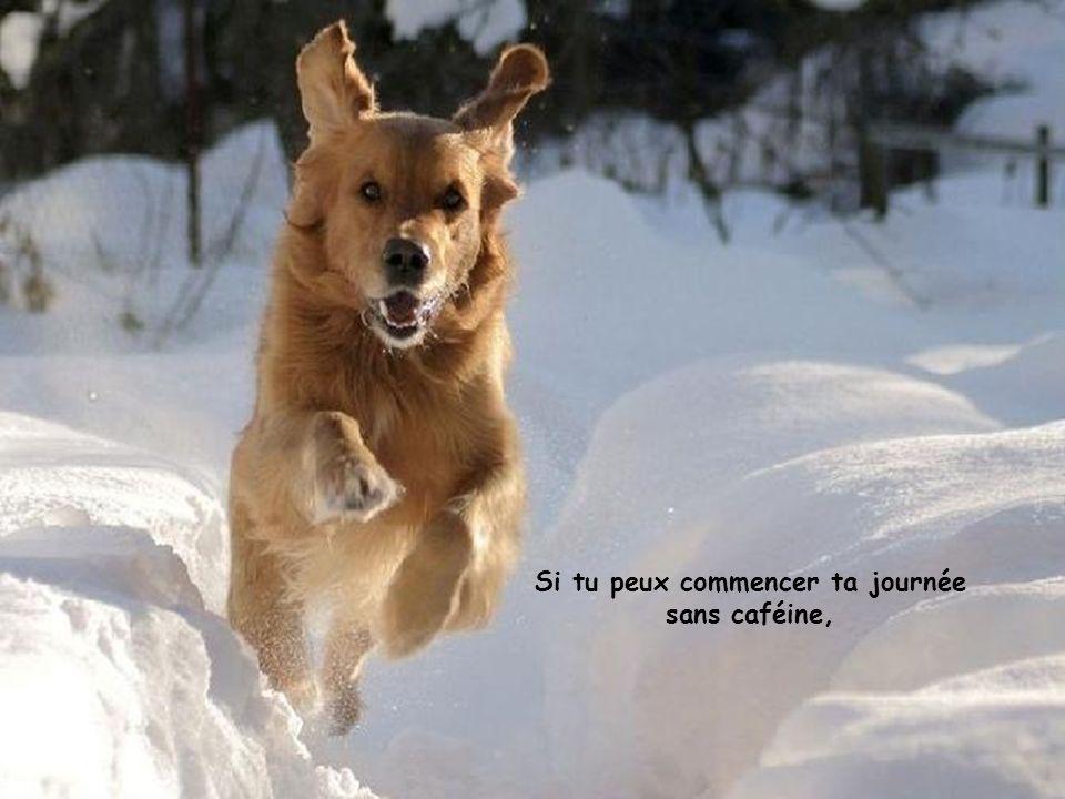 Si tu peux commencer ta journée sans caféine,