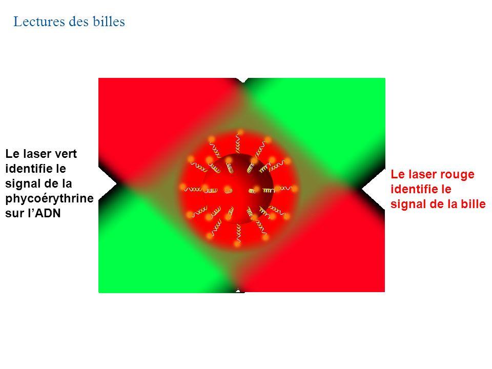 Lectures des billes Le laser vert identifie le signal de la phycoérythrine sur l'ADN. Le laser rouge identifie le signal de la bille.