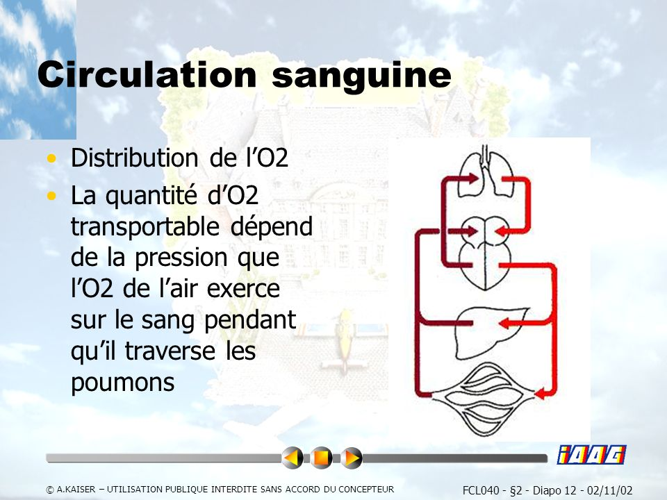 Circulation sanguine Distribution de l'O2