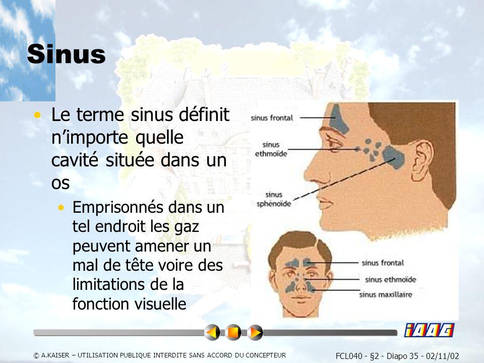 Sinus Le terme sinus définit n'importe quelle cavité située dans un os