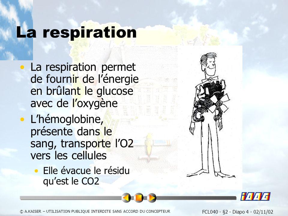 La respiration La respiration permet de fournir de l'énergie en brûlant le glucose avec de l'oxygène.