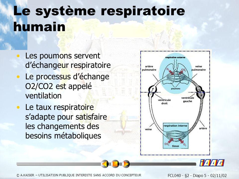 Le système respiratoire humain