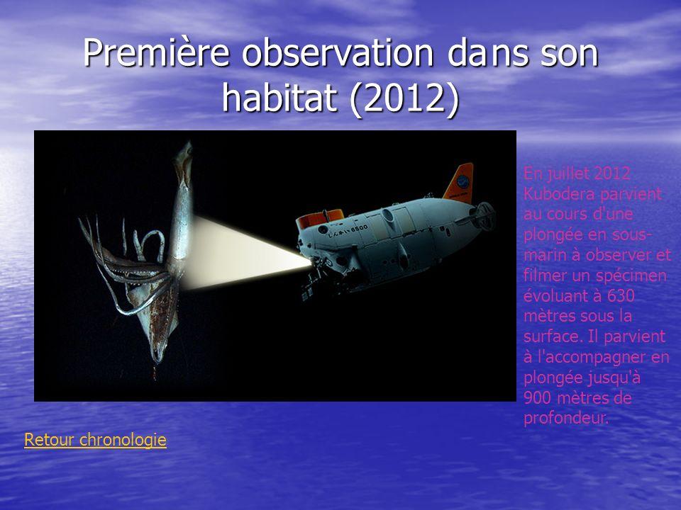 Première observation da ns son habitat (2012)