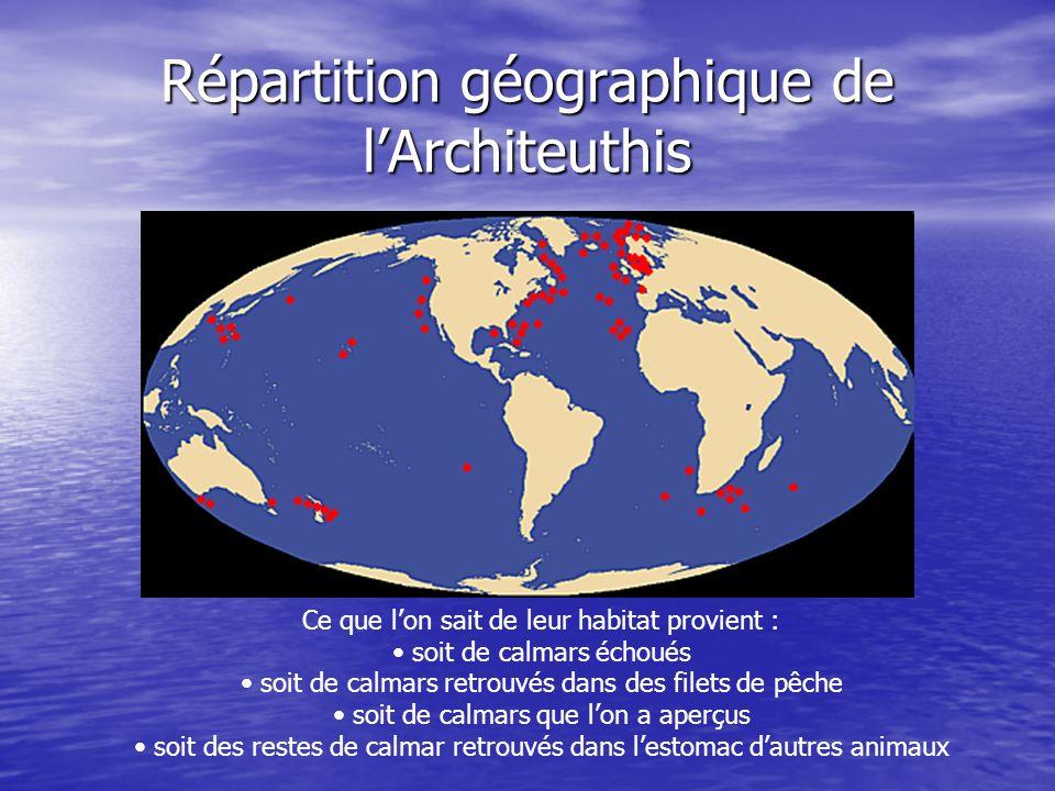 Répartition géographique de l'Architeuthis