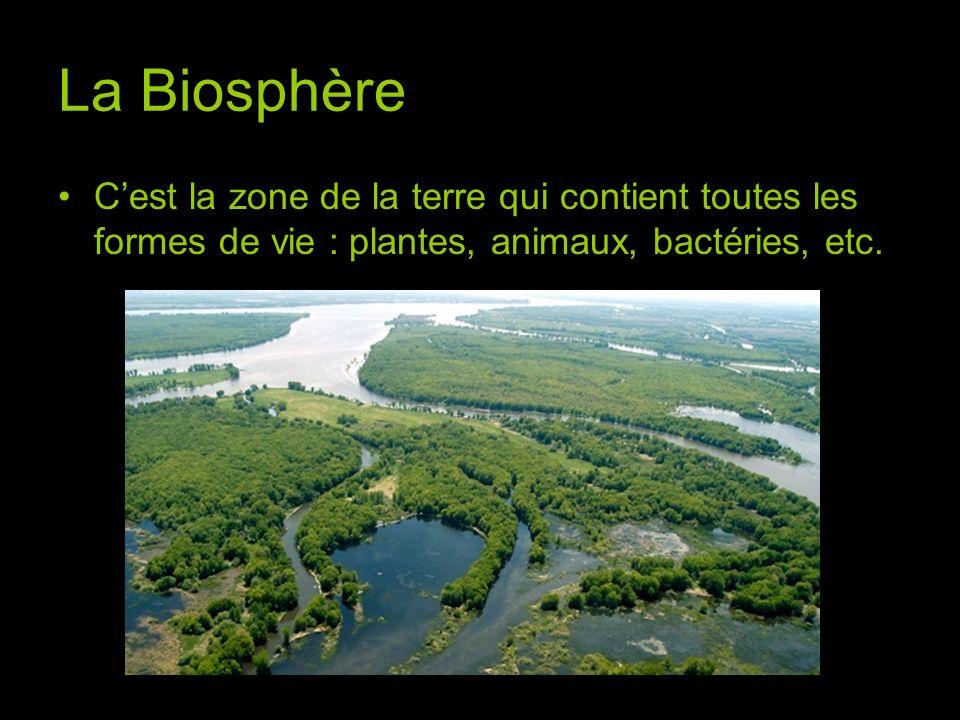 La Biosphère C'est la zone de la terre qui contient toutes les formes de vie : plantes, animaux, bactéries, etc.